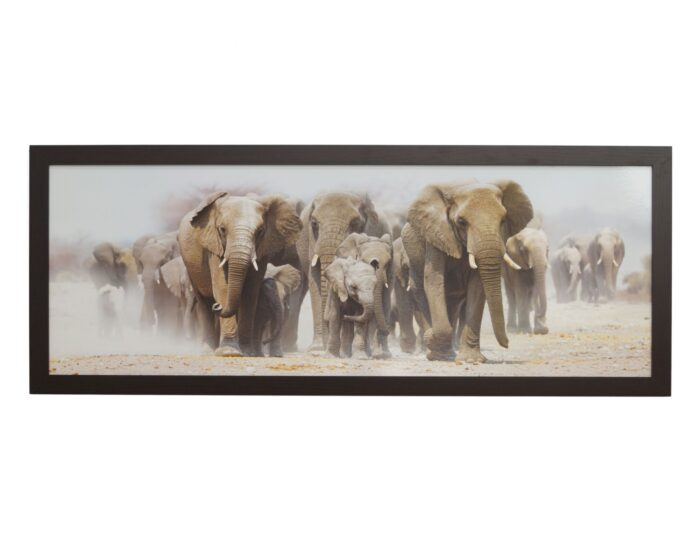 obraz-wedrujace-slonie-w-ozdobnej-ramie